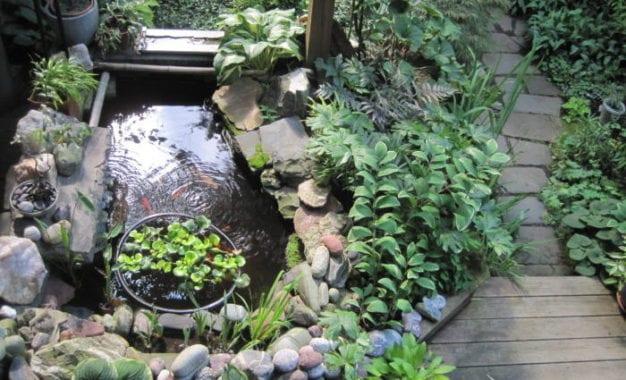 The gardens of Ilium: Annual Hidden Garden Tour opens secret sanctuaries next Thursday