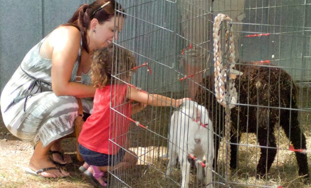 MHLC Summer Fest celebrates Indian Farm's 100th anniversary, opening of new cidery & brewery