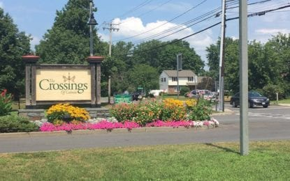 "Paved Paradise: Local advocacy group aims to ""SAVE Colonie"""