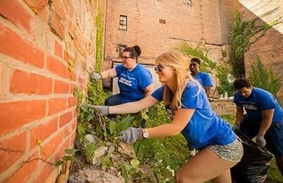 UAlbany students involved in the Living and Learning Communities (LLC) participate in a Day of Service on September 11, 2016.  Photographer: Paul MIller