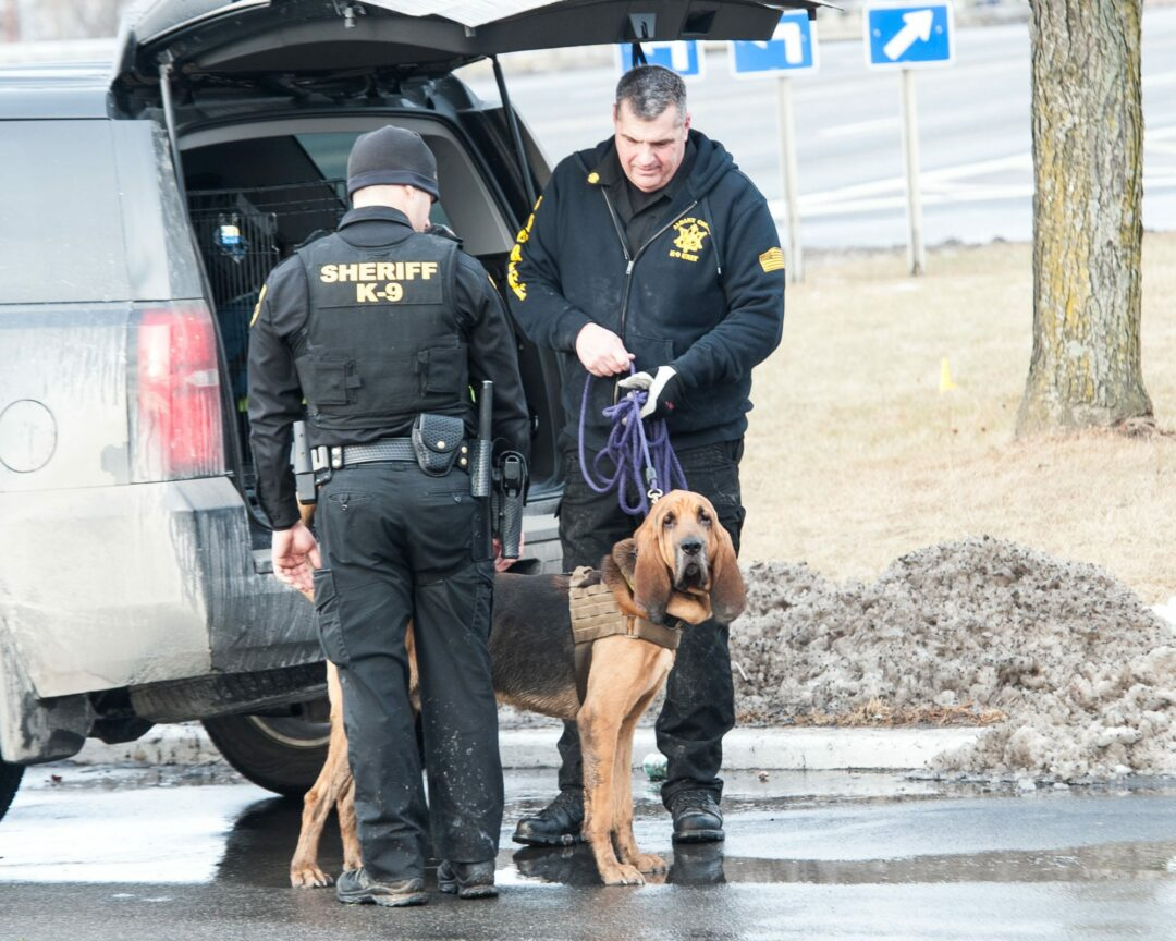 Albany County Emergency Services Coordinator Jerry Paris and his K9, Baxter with another officer. (Photo by Jim Franco/Spotlight News)