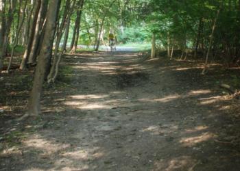 The path from Delaware Plaza to the Rail Trail in Delmar.